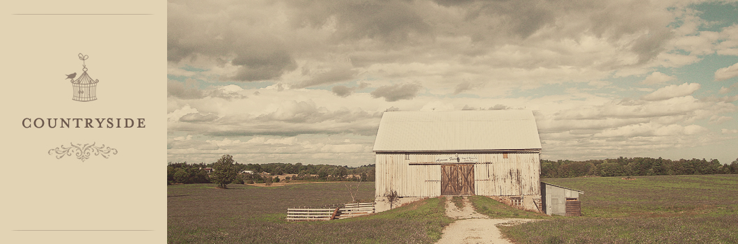 landscape photography of an abandoned old barn